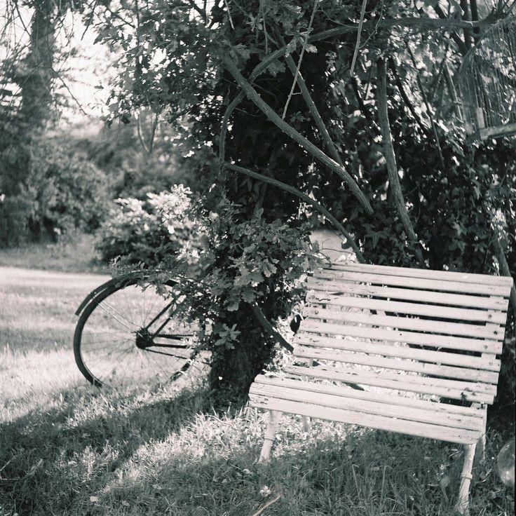 Petit Banc et vieux vélo