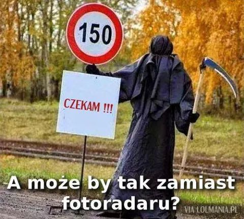 DecoArt24.pl #cytaty #любимые #фотки #смешные #цитаты #favoritegifs   #funnygifs #gifs #animallovers #catlovers #caturdayeveryday