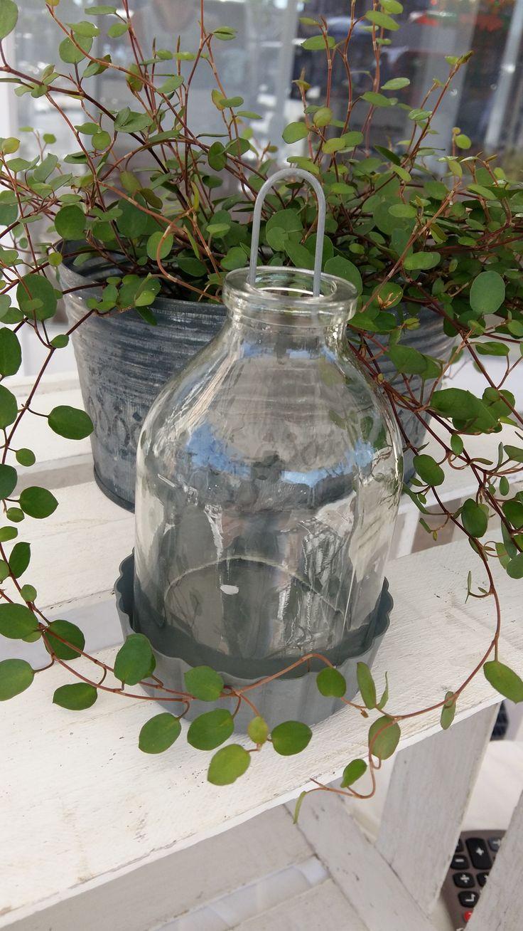 Süsse Windlichter zum Hängen in einer verzinkten Cupcakeform - verbreiten auf deiner Terasse und im Garten warmen Lichtschein