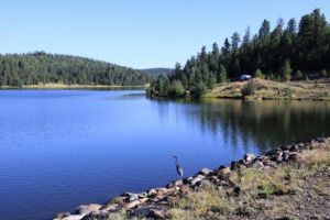 """Looking for that last family fishing outing of summer over Labor Day weekend? Here are some tips from the Arizona Game and Fish Department to help you plan your getaway. """"Arizona is blessed with lots of great fishing lakes, in part because we are an arid state that needs lots of water impoundments,"""" said Rory …"""
