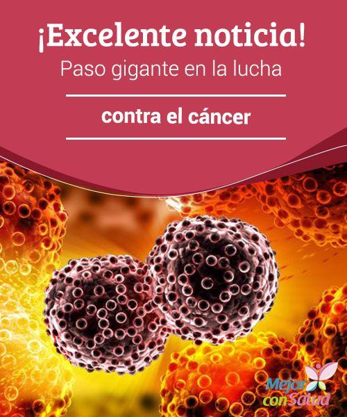 ¡Excelente noticia! Paso gigante en la lucha contra el cáncer La lucha contra…