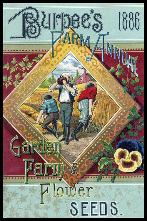 ❤ Vintage Art Seed Label Poster Print! ☮~ღ~*~*✿⊱ レ o √ 乇 !! - Victorian Gaslight Style.  C. Late 1800s- Early 1900s