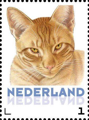 Stamp: Domestic Cat (Felis silvestris catus) (Netherlands - Personalized stamps) (Cats, Francine van Westering) Col:NL 2015-083