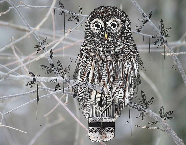 dahotre dessein faune illustrateur dessin il est dessins illustration les photos danimaux german cruz illustrator doodles