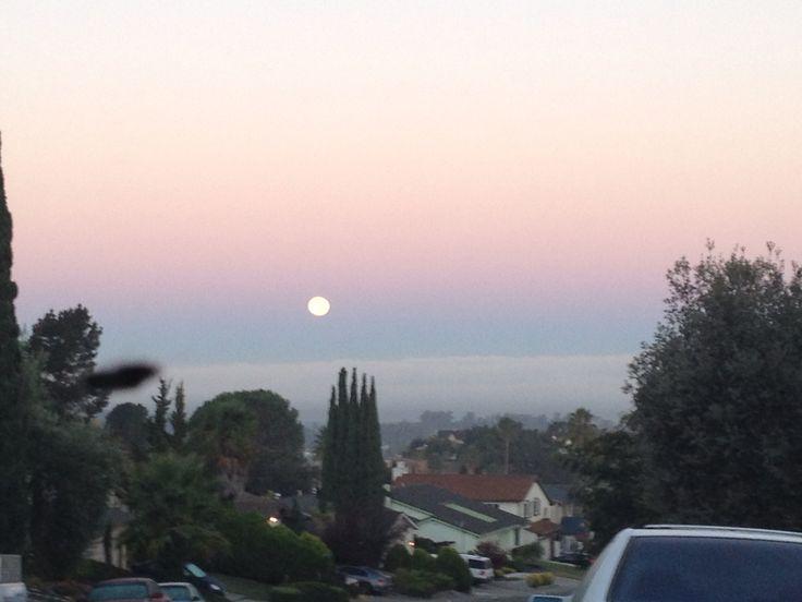 My neighborhood, Hercules, California.
