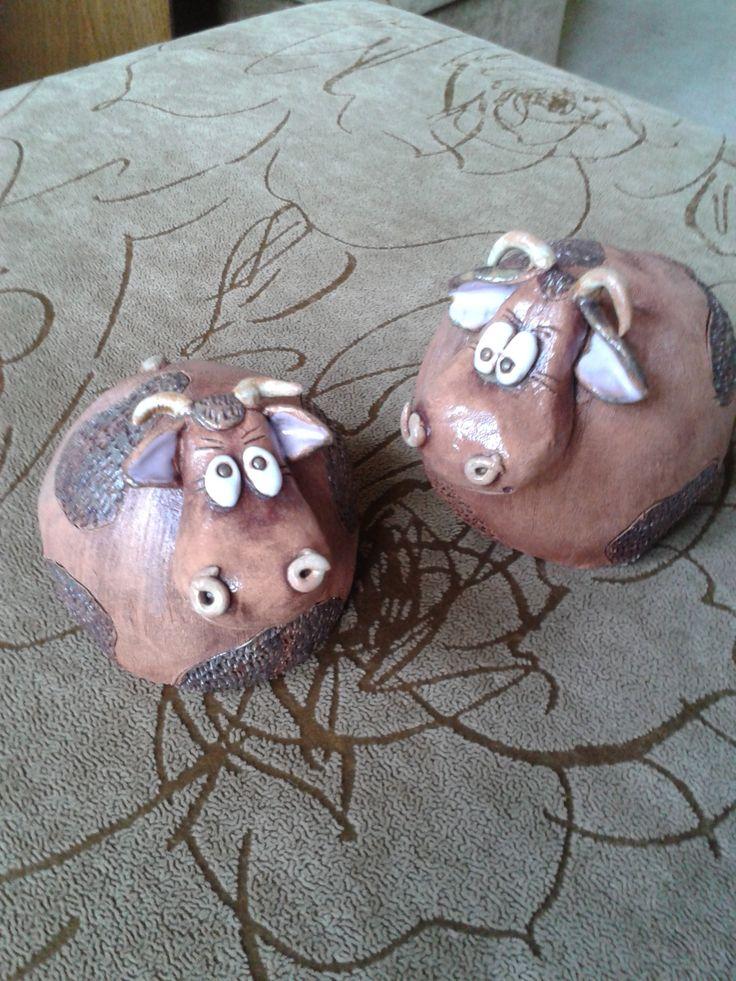 kravičky