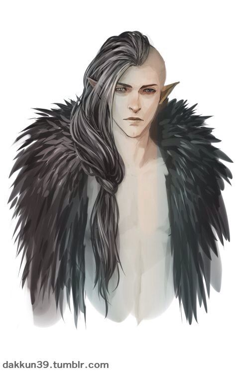 It would be nice if bioware gave us this ( I mean young, hot blooded and cocky)Solas.