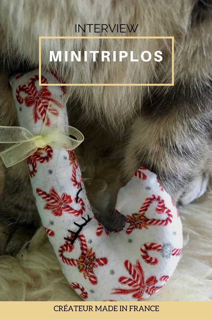retrouvez l'interview des minitriplos, une boutique familiale qui réalise des jouets fabriqués en France - secrets d'entrepreneur
