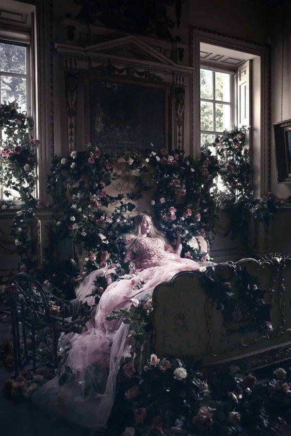 """Aurore_La Belle aux Bois Dormants MAIS NON COCOTTE, """"AU BOIS DORMANT"""", ÇA SUFFIT D ' UN..."""
