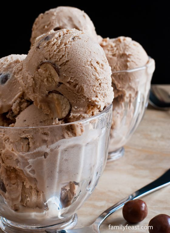 Chocolate Malted Ice Cream - A Family Feast
