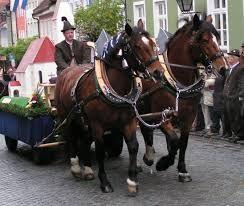 Murnauer Leonhardi Ritt am 6.11. - ein faszinierendes Ereignis, vor allem für Pferdeliebhaber