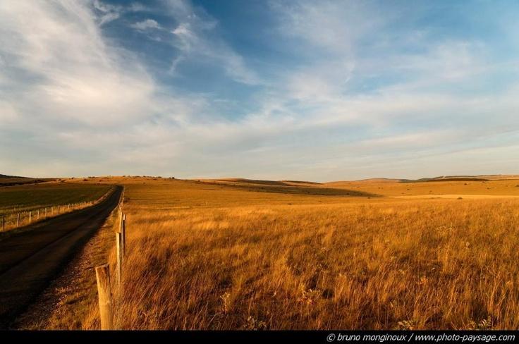 le Causse Méjean (grasslands in France)