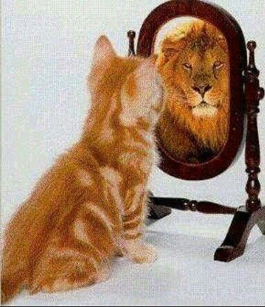 Todos queremos ser algo de grandes
