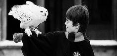 J.K. Rowling dijo que ella encontró el nombre de Hedwig en un libro de santos.   31 datos de Harry Potter que harán que quieras releer la serie (otra vez)