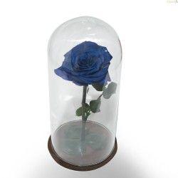 Rosa Azul Preservada en Cristal