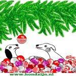 Hondenstreken tijdens kerst...Het laatste waar je als mens aan denkt zijn hondenstreken tijdens kerst. Voor een hond zijn hondenstreken juist vanzelfsprekend. Lees het op www.hondzijn.nl