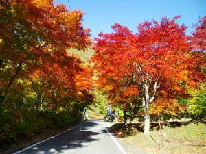 湯宿 梅川荘:宿までの道