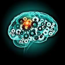 NEUROEDUCACIÓN 25 HALLAZGOS EN 25 AÑOS http://www.fortes.com.es/actual/neuroeducacion-25-hallazgos-en-25-anos/