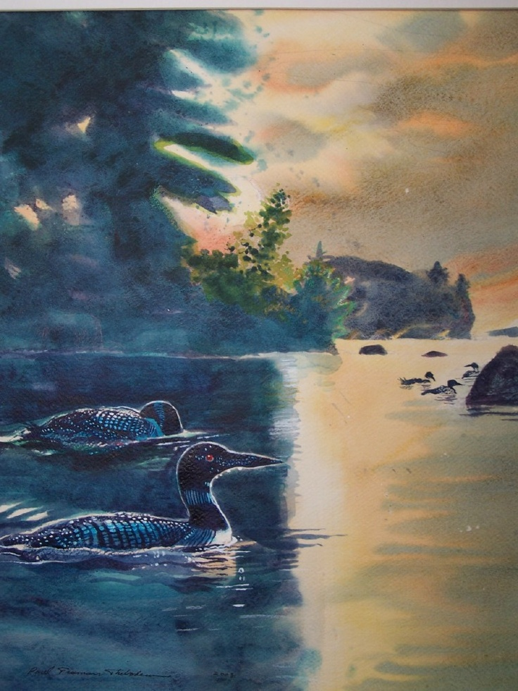 55 Best Images About Loons On Pinterest Maine Lakes And