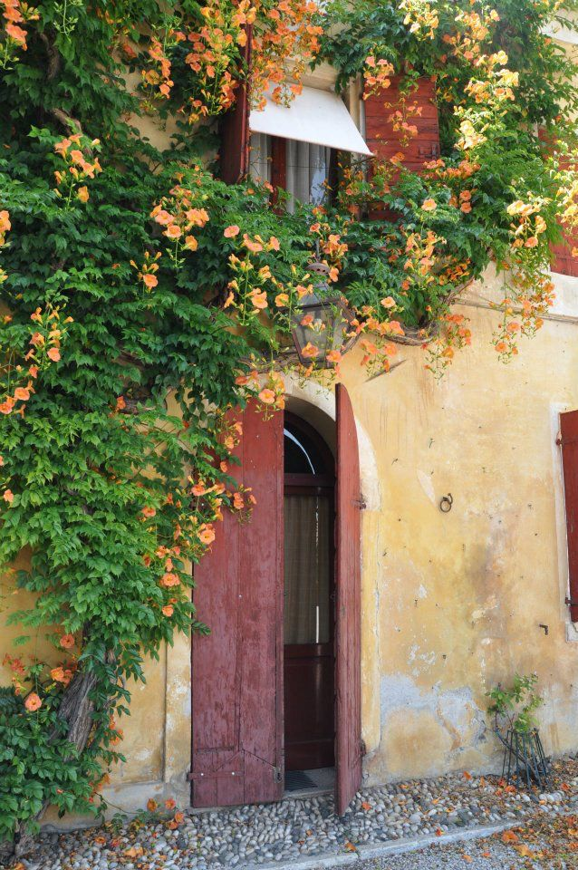 17 Best Images About Tuscan Color Palettes On Pinterest