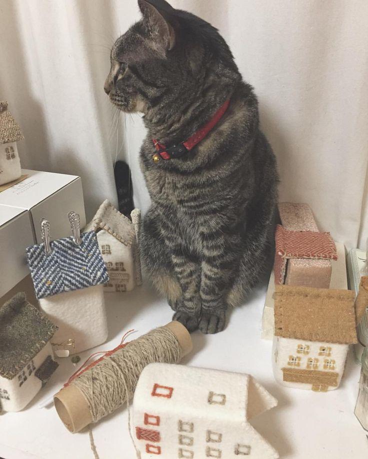 そこで何してますか? #cat #catslovers #ねこ部 #ねこ #キジネコ48 #羊毛フェルト #wetfelt #家 #家ランプ #craft