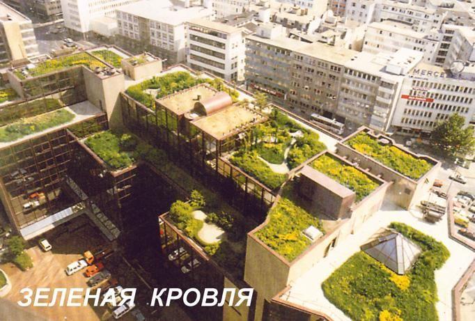 жилые комплексы кровли зеленіе террасі - Пошук Google