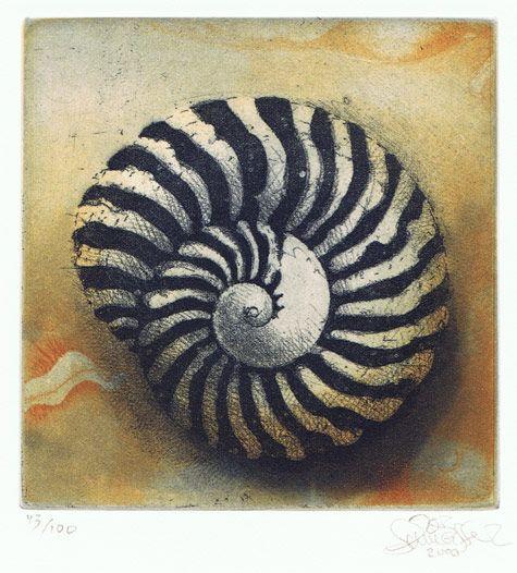Jörg SCHMEISSER  Spiral Shell