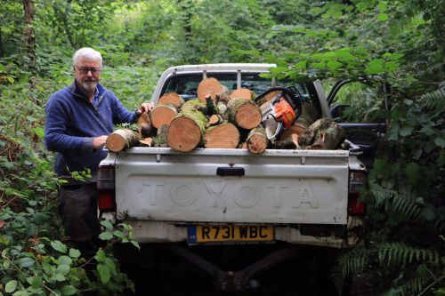 My dad and I felled 2 Ash trees in are woodland in Ashburton...