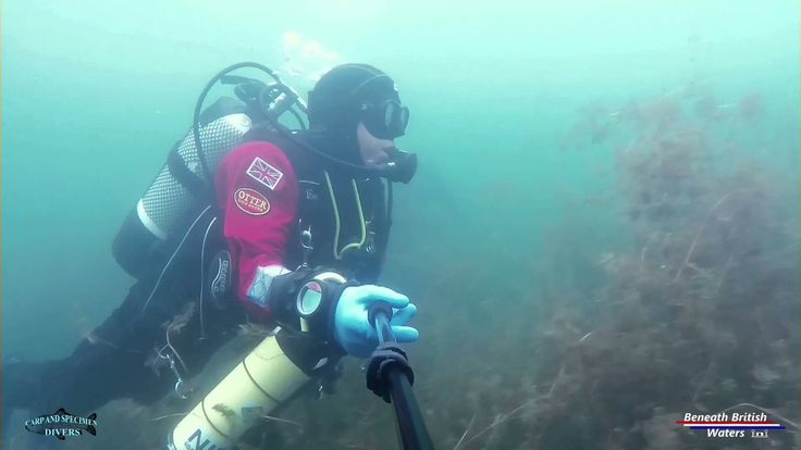 Wow! What a great underwater video from the Beneath British Waters team