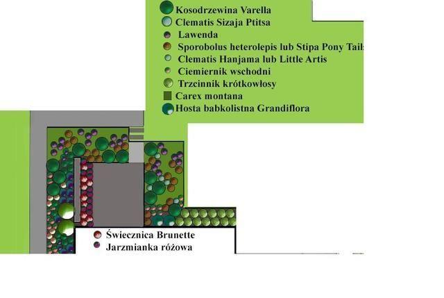 Nowocześnie u Kasji...kiedyś będzie:-) - strona 649 - Forum ogrodnicze - Ogrodowisko