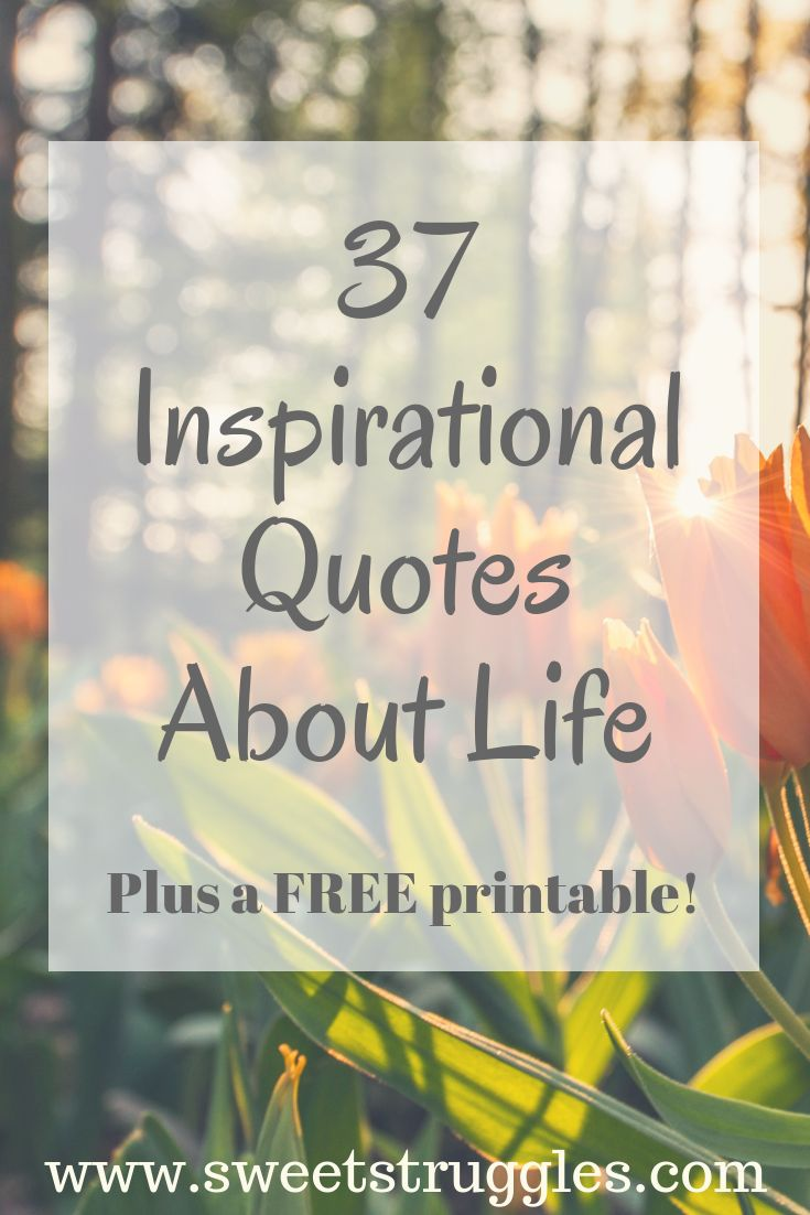Inspirational Life Quotes Inspiring quotes about life