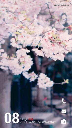 벚꽃 버즈런처 테마 (홈팩)