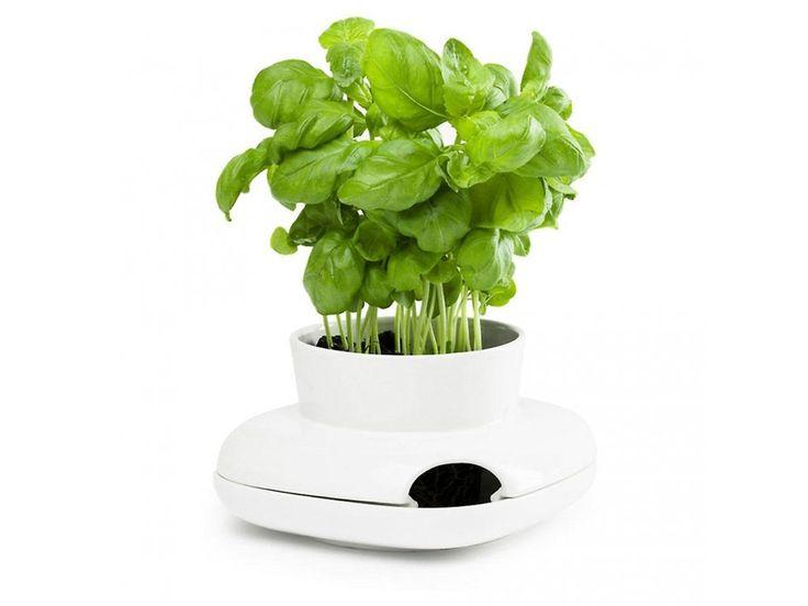 Samozavlažovací květináč na bylinky SAGAFORM Herb. Dvojdílná porcelánová nádoba…