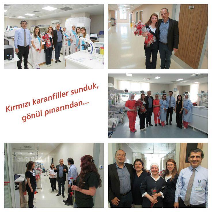 """Takdir edilmesi gerçekten önemli olan hemşirelik mesleği, Türkiye'de 1964 yılından bu yana kutlanıyor. Bu önemli günü unutmayan Esencan Hastanesi Yönetim Kurulu Başkanı Dr. Taşkın Yenidünya da 12 Mayıs Dünya Hemşireler Günü'nde, hastanenin her birimini gezerek tüm hemşirelere kırmızı karanfillerle ve  """"Sizler, bizim asıl kahramanlarımızsınız"""" sözleriyle teşekkür etti."""