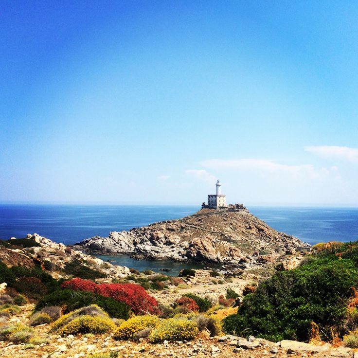 Biking around the national park of Asinara