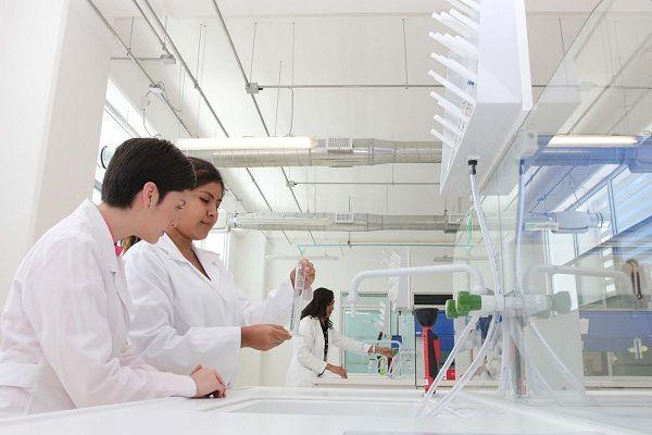 BUAP. 29 de septiembre de 2016.-  Con el respaldo de la calidad de sus posgrados, 61 adscritos al Programa Nacional de Posgrados de Calidad (PNPC) del Conacyt, un significativo número de cuerpos académicos consolidados, 90, y miembros en el Sistema Nacional de Investigadores (SNI), 565, así como la participación de sus científicos en proyectos internacionales de gran renombre, la BUAP se posiciona como un referente de la investigación en México.  Los resultados de dicha generación y…
