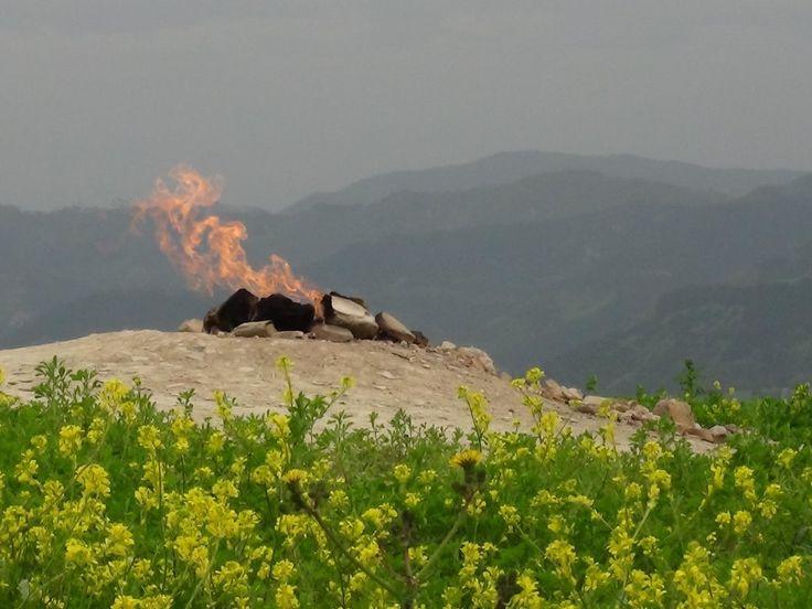 Volcano Mount Busca (natural gas flame) - Tredozio