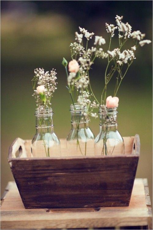 charming roses in jars