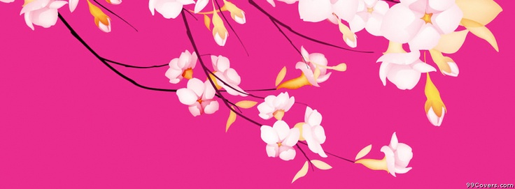 White Flowers Pink Background Facebook Covers