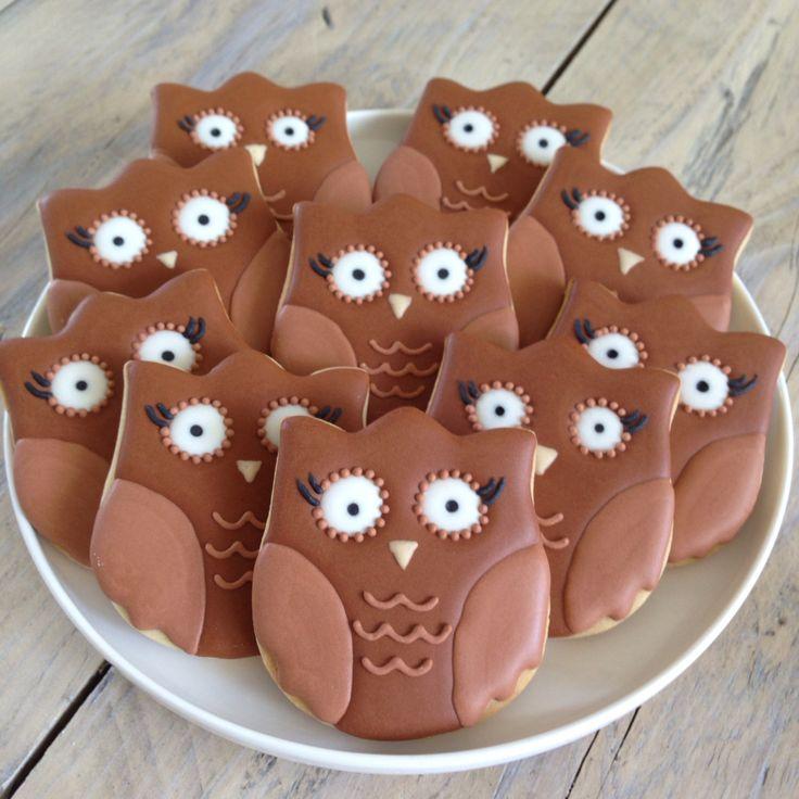 Owl cookies Uil koekjes