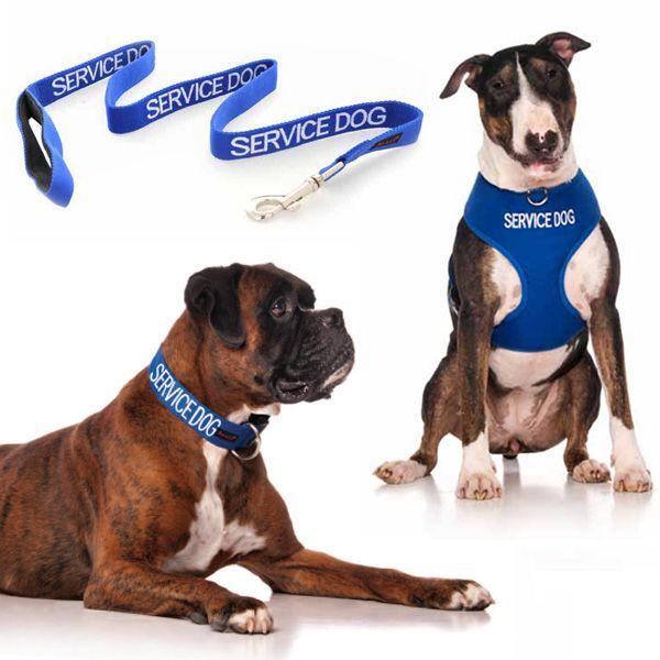 10% off blue SERVICE DOG medium combo sets plus FREE SHIPPING within Australia. Models: Boxer Dog & Bull Terrier