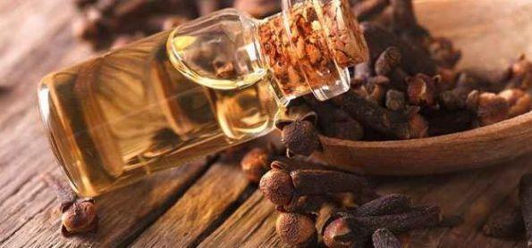 أهم فوائد زيت القرنفل للأسنان والبشرة واضراره موقع مصري Turkish Spices Clove Tea Cloves Benefits