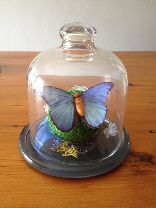 Gifts & Ornaments - Fairy Butterfly mini terrarium for sale https://www.facebook.com/FantasyCreationsbyShellyBode