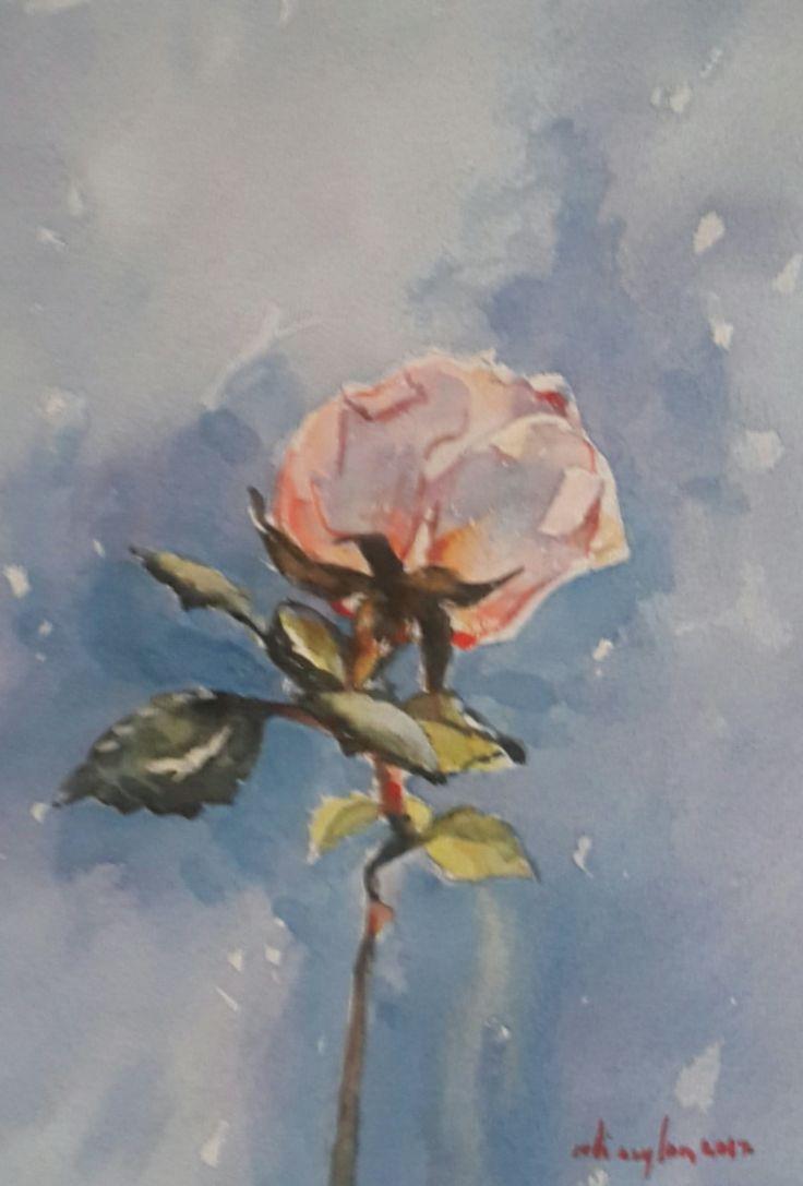 Watercolor by Ali Seylan