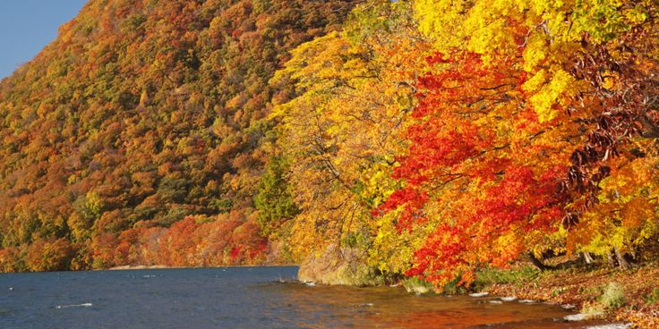 Armed with our fall foliage predictor and current list of favorite places to see the leaves change, we're adding Hokkaido, Japan to our leaf-peeping bucket list!    You might've heard of Hokkaido because of the beautiful Sapporo Snow Festival and i...