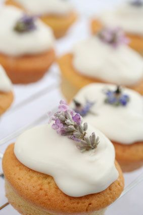lovely lavender cupcakes - will try when my lavendar blooms