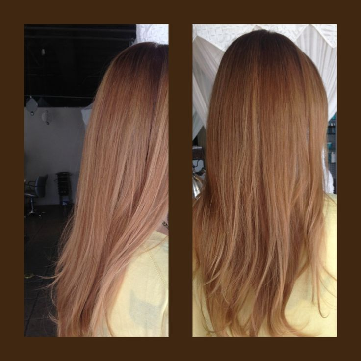 Level 5 Light Brown With 60 Gray Hair 8 00 Light Blonde