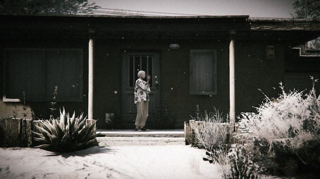 In-Game Gta V Photography-3