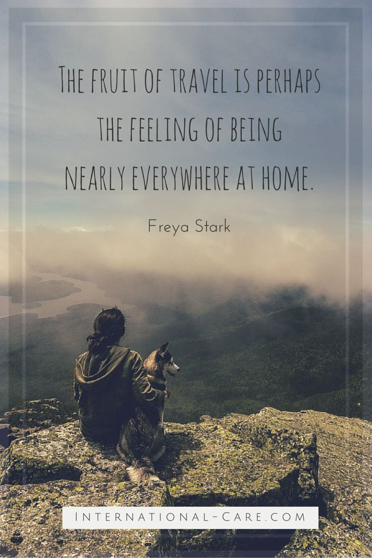 Incredible Quotes Cool 12 Best Incredible Travel Quotes Images On Pinterest  Journey