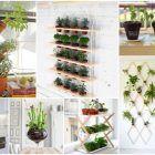 diy-mini-jardines-interior